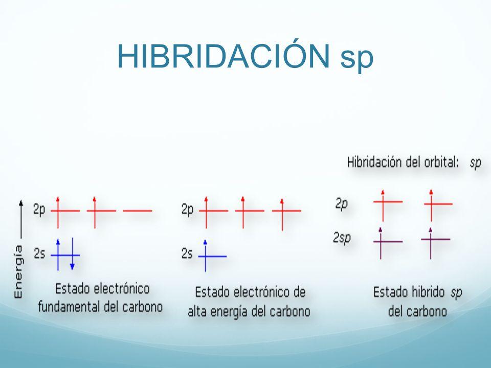 HIBRIDACIÓN sp 29