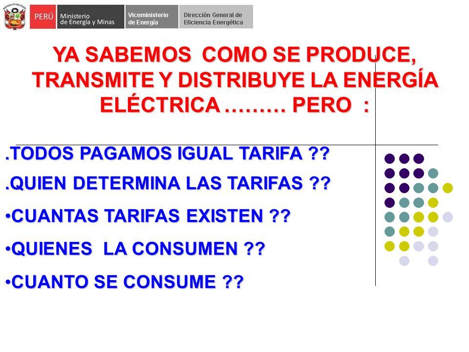 YA SABEMOS COMO SE PRODUCE, TRANSMITE Y DISTRIBUYE LA ENERGÍA ELÉCTRICA ……… PERO :