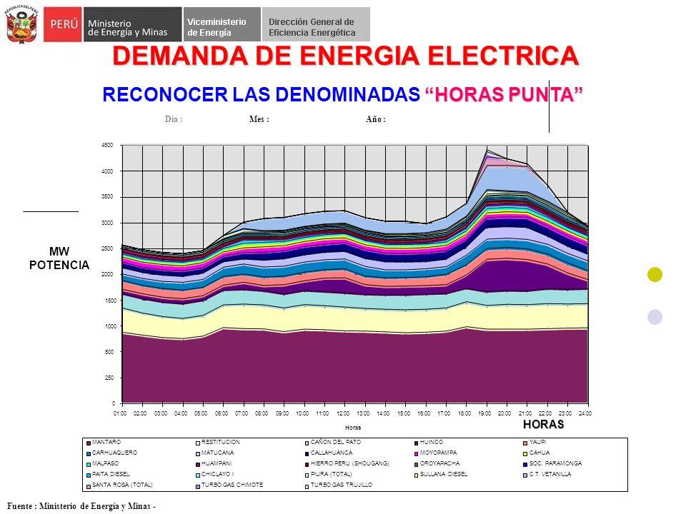 DEMANDA DE ENERGIA ELECTRICA RECONOCER LAS DENOMINADAS HORAS PUNTA