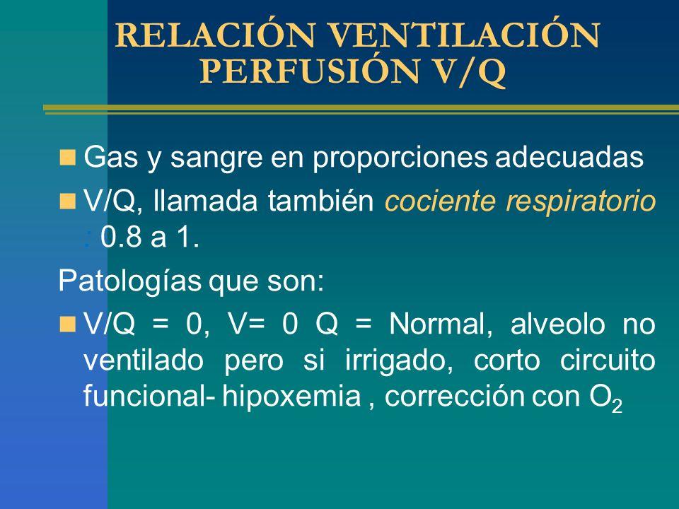 RELACIÓN VENTILACIÓN PERFUSIÓN V/Q