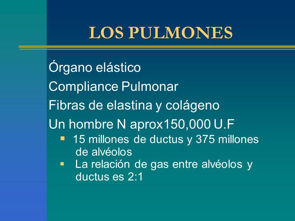 LOS PULMONES Órgano elástico Compliance Pulmonar