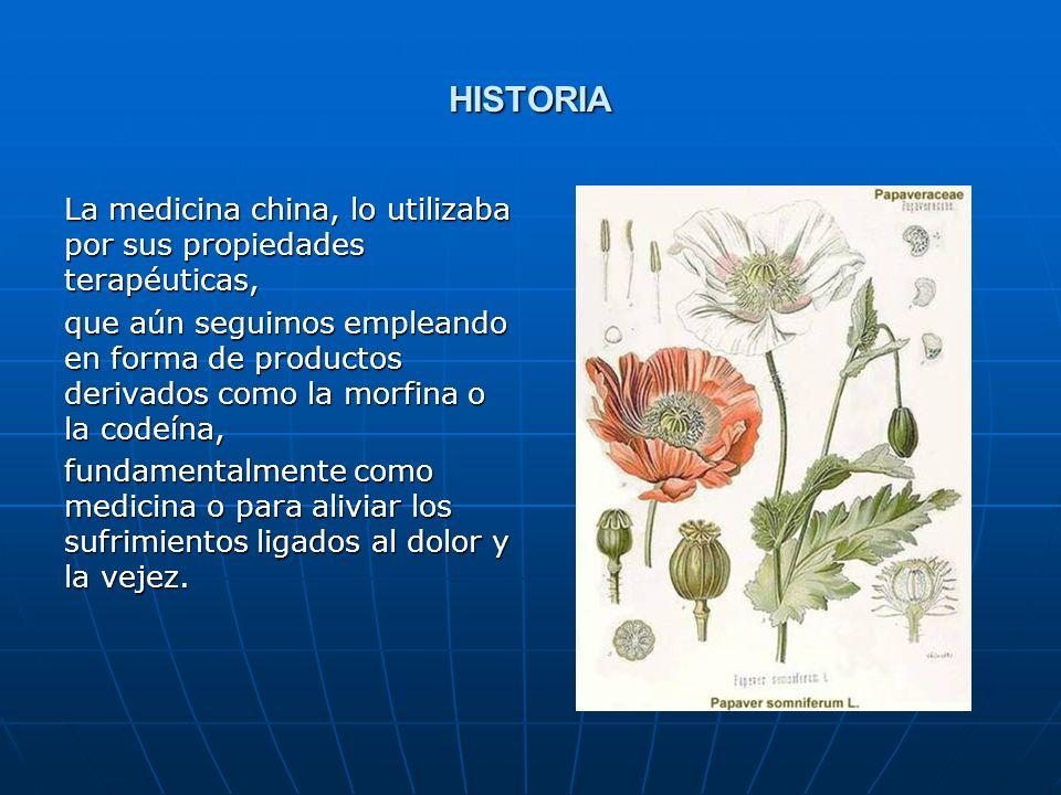 HISTORIA La medicina china, lo utilizaba por sus propiedades terapéuticas,