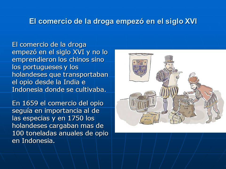 El comercio de la droga empezó en el siglo XVI