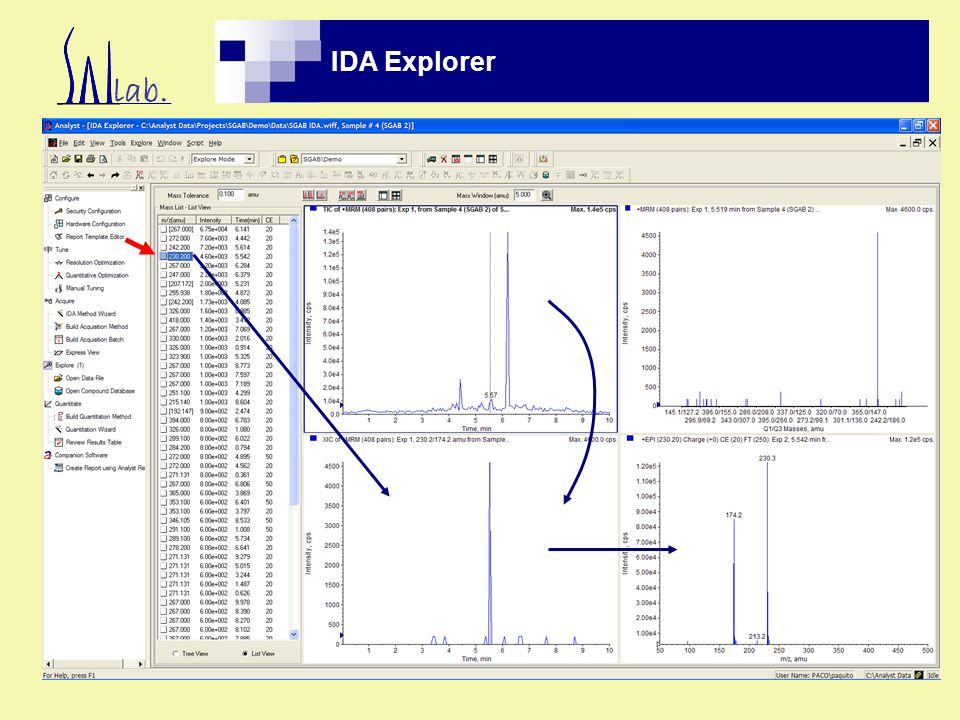 IDA Explorer