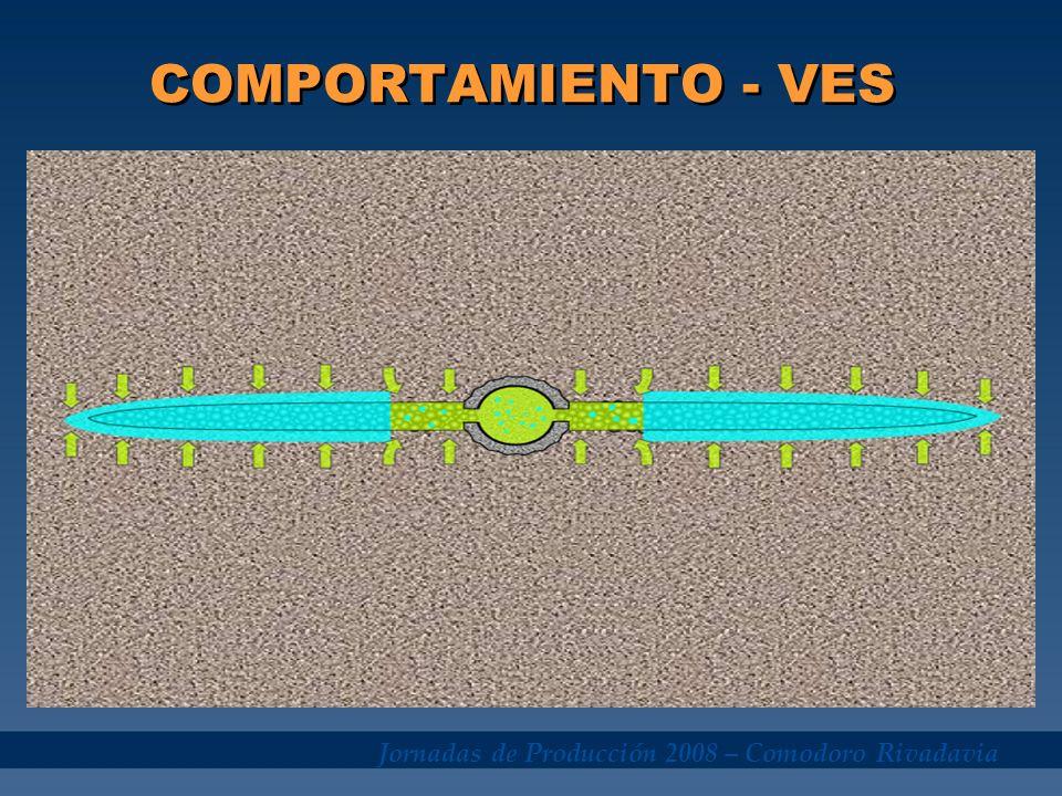 COMPORTAMIENTO - VES Jornadas de Producción 2008 – Comodoro Rivadavia
