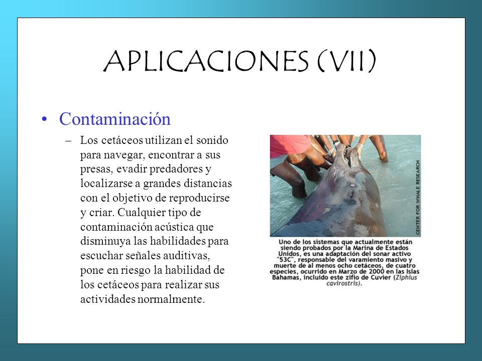 APLICACIONES (VII) Contaminación