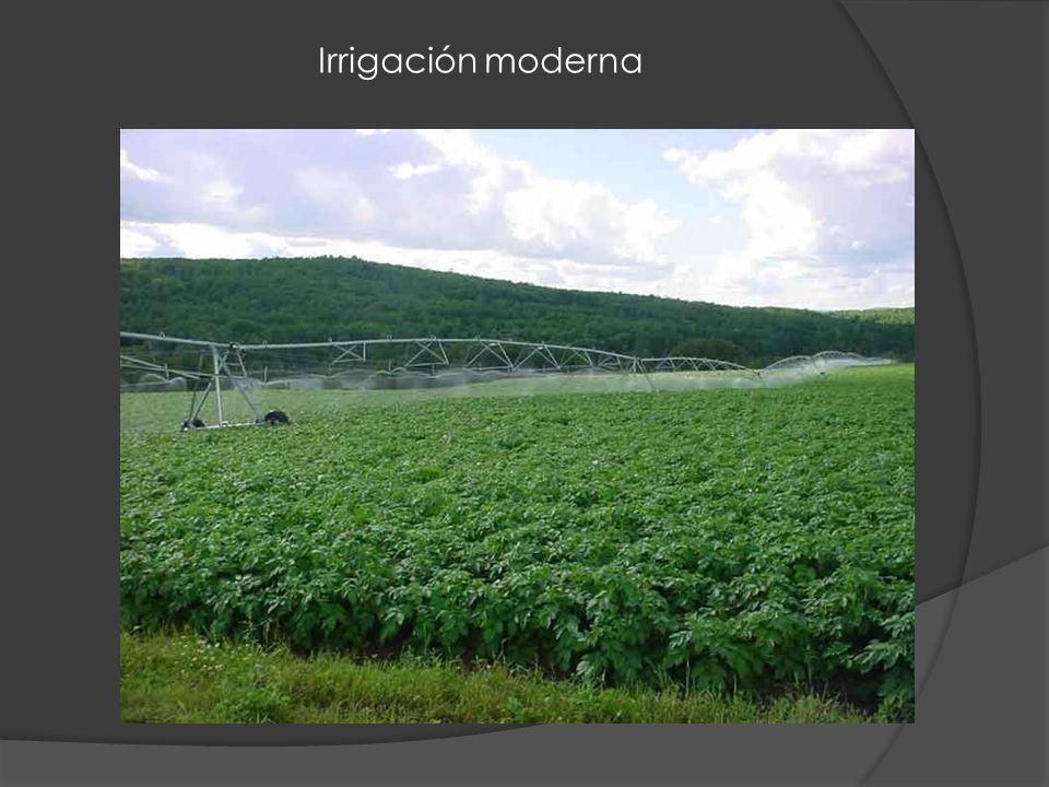 Irrigación moderna