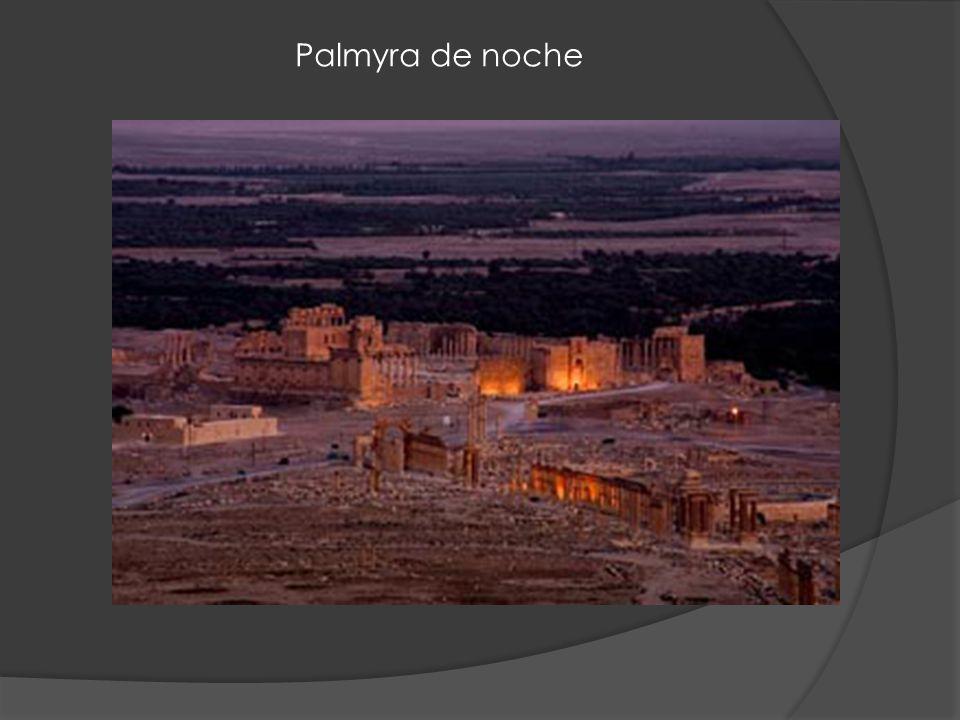 Palmyra de noche