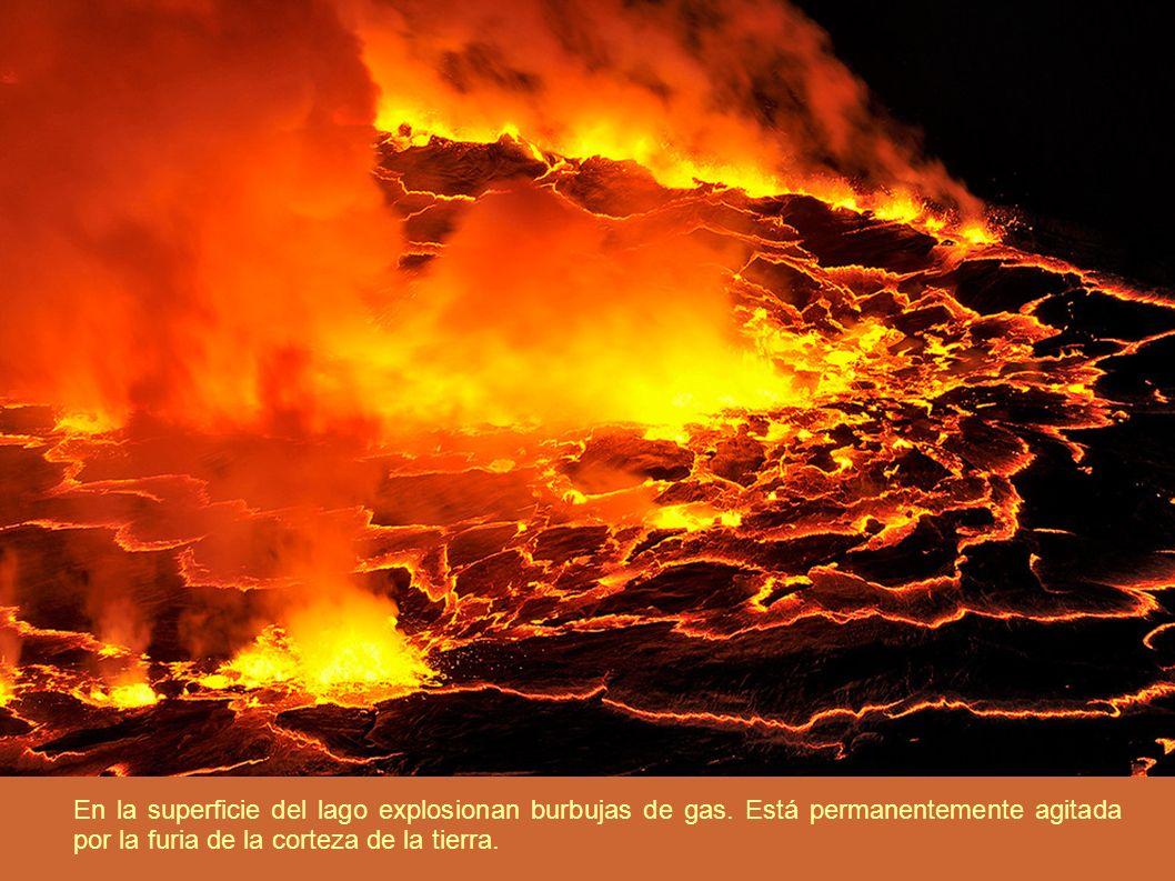 En la superficie del lago explosionan burbujas de gas