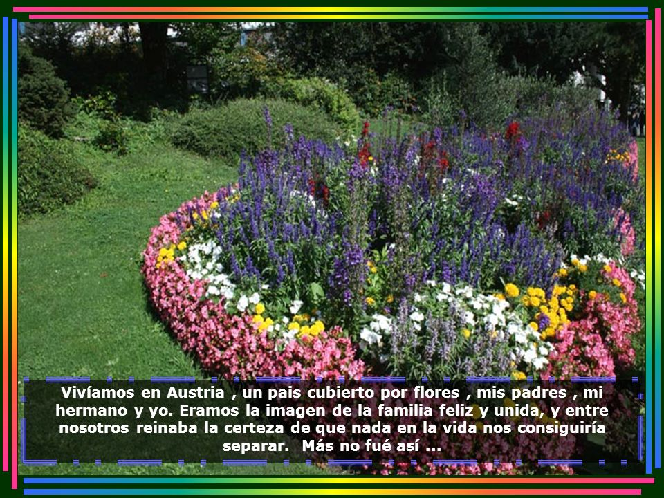 IMG_2820 - ALEMANHA - FREIBURG - JARDINS-700.jpg