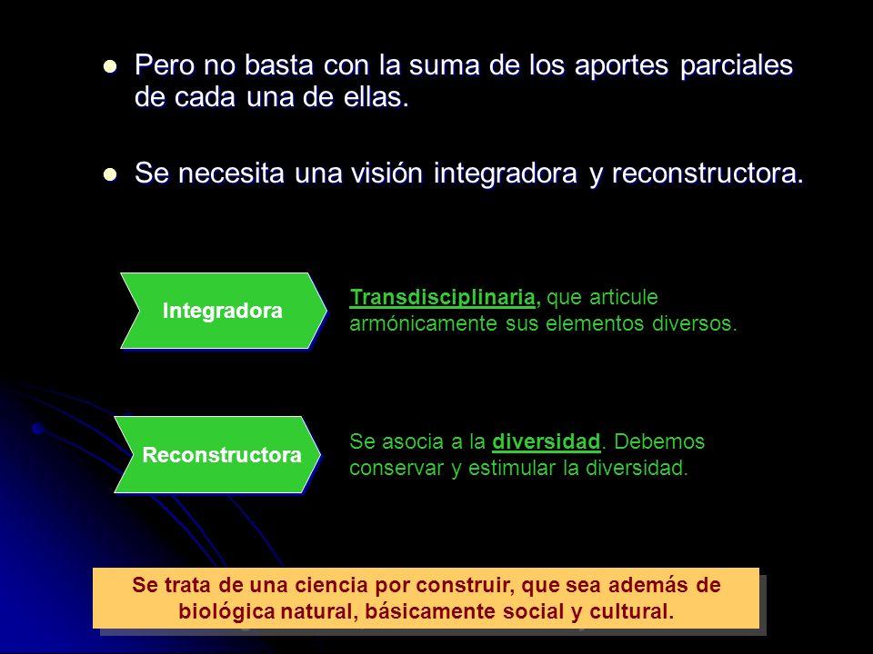 Se necesita una visión integradora y reconstructora.