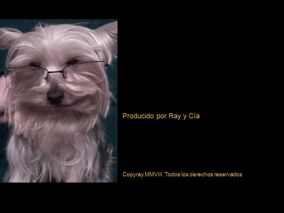 Producido por Ray y Cía Copyray MMVIII. Todos los derechos reservados