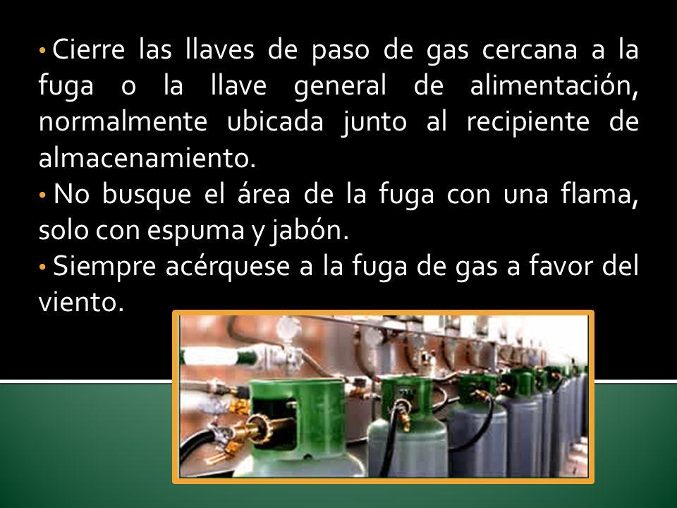 Cierre las llaves de paso de gas cercana a la fuga o la llave general de alimentación, normalmente ubicada junto al recipiente de almacenamiento.