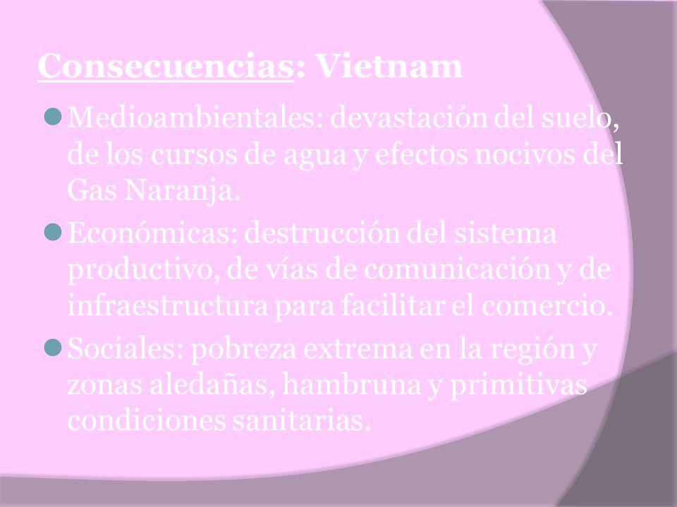 Consecuencias: Vietnam