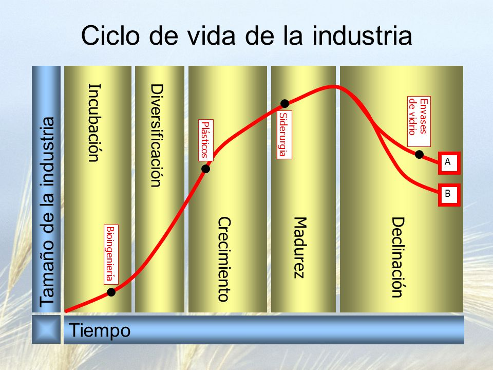 Ciclo de vida de la industria