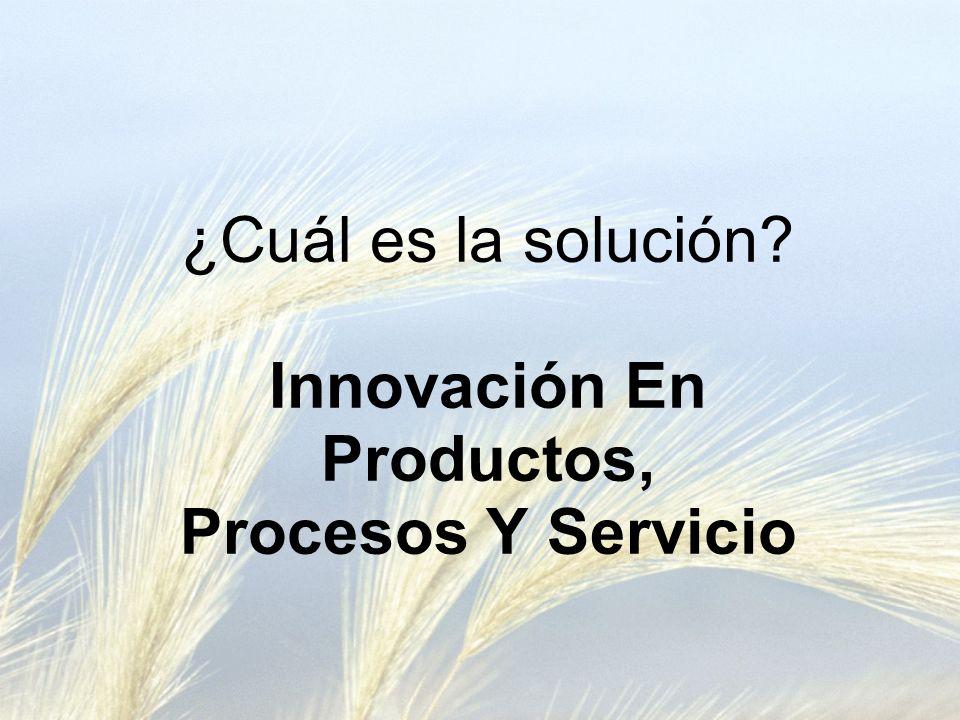 ¿Cuál es la solución Innovación En Productos, Procesos Y Servicio