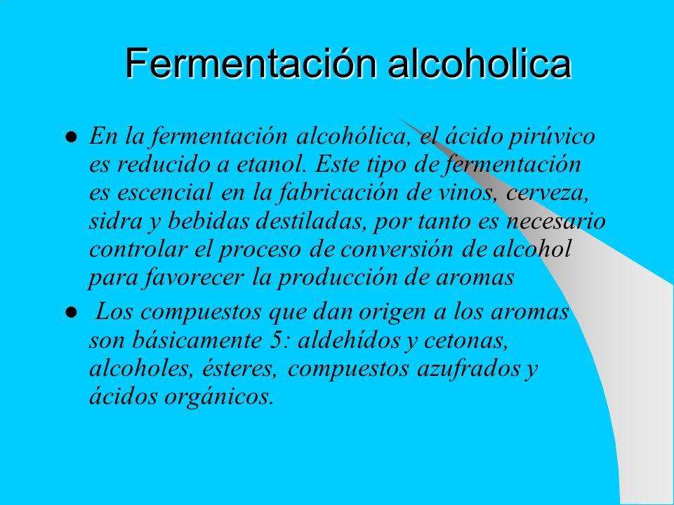 Fermentación alcoholica