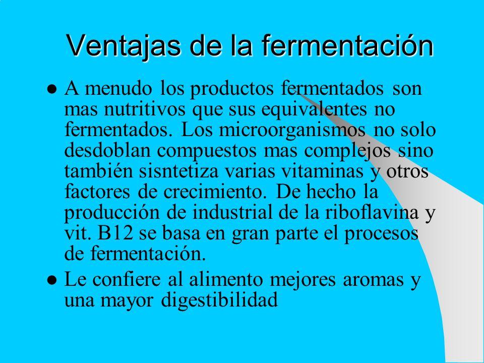 Ventajas de la fermentación