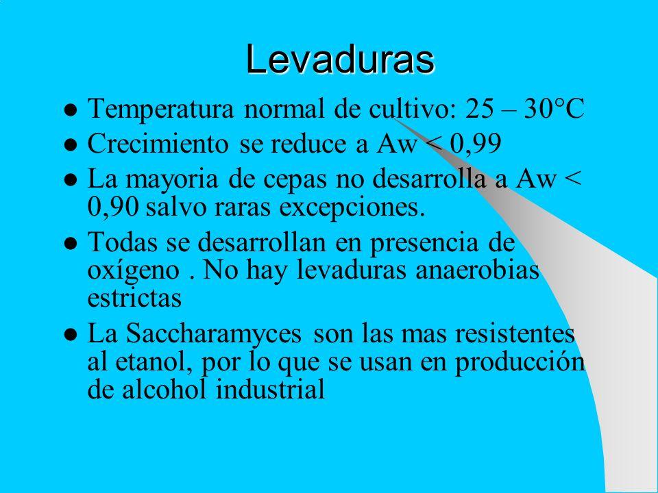 Levaduras Temperatura normal de cultivo: 25 – 30°C