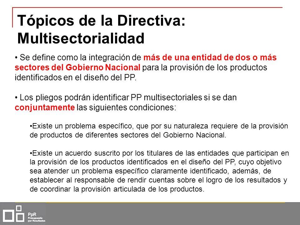 Tópicos de la Directiva: Multisectorialidad