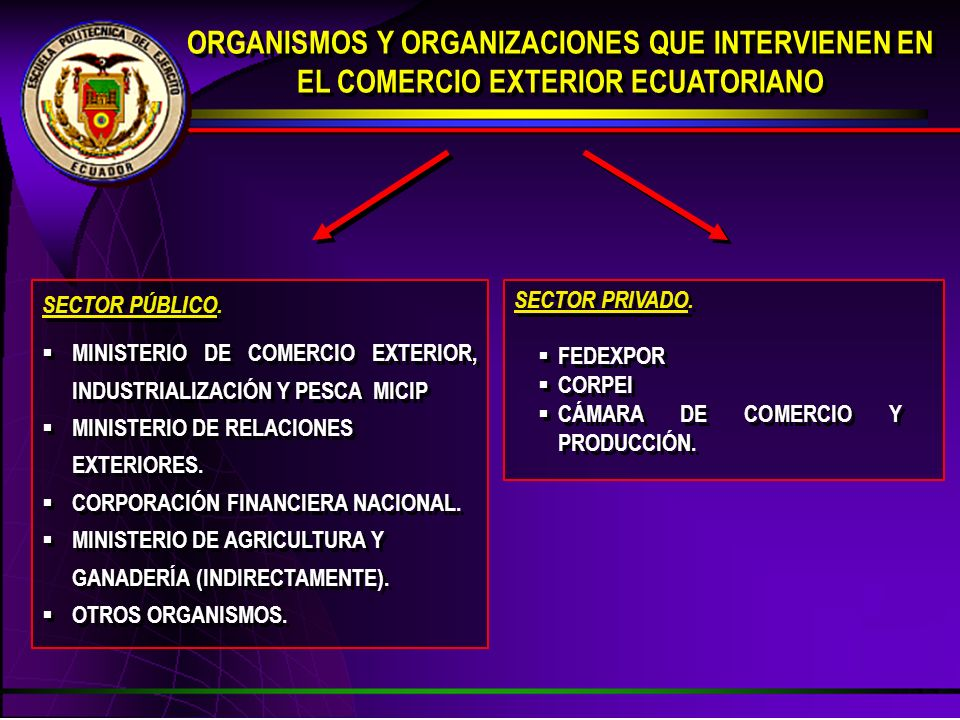 ORGANISMOS Y ORGANIZACIONES QUE INTERVIENEN EN