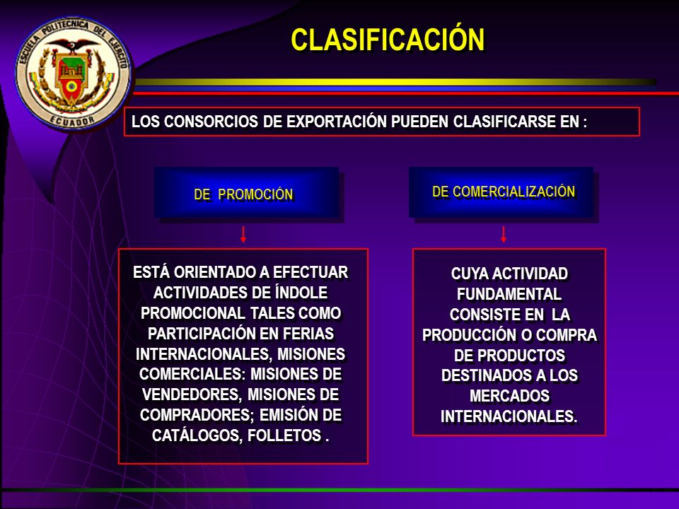 CLASIFICACIÓN LOS CONSORCIOS DE EXPORTACIÓN PUEDEN CLASIFICARSE EN :