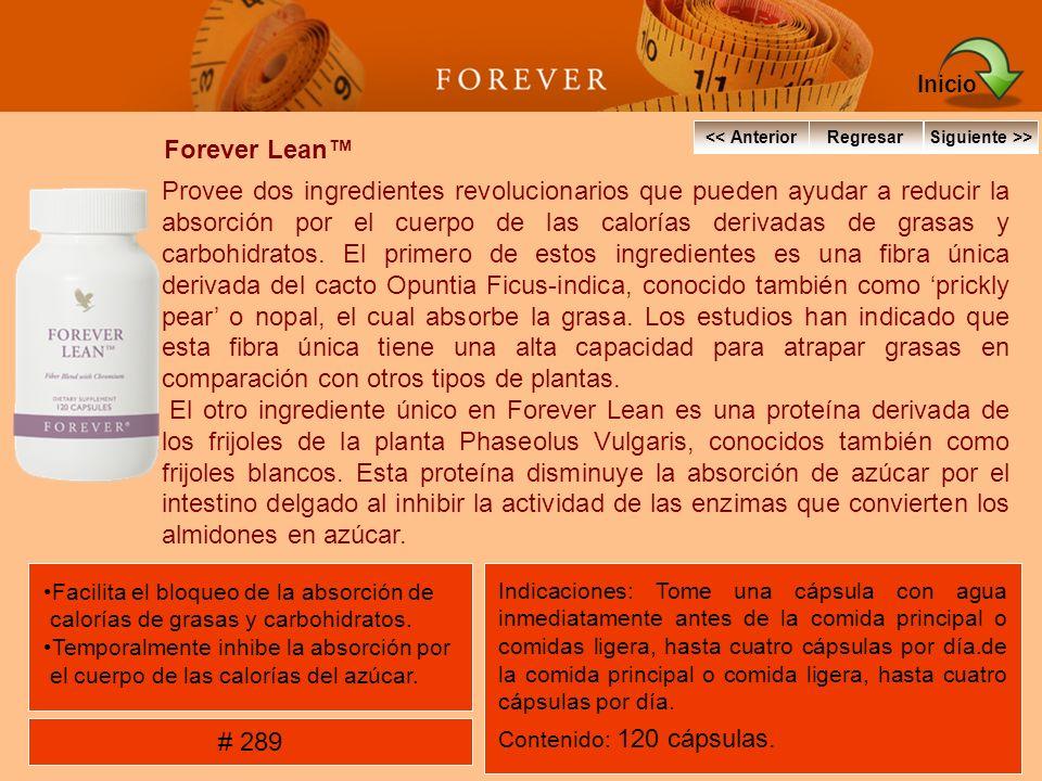 Inicio << Anterior. Regresar. Siguiente >> Forever Lean™