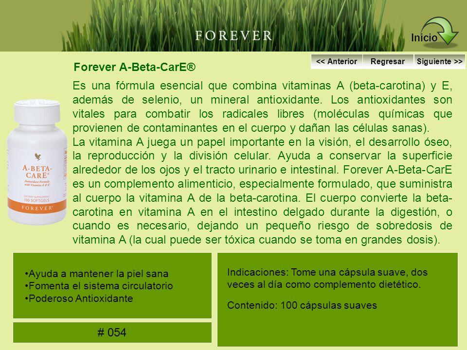Inicio Forever A-Beta-CarE®