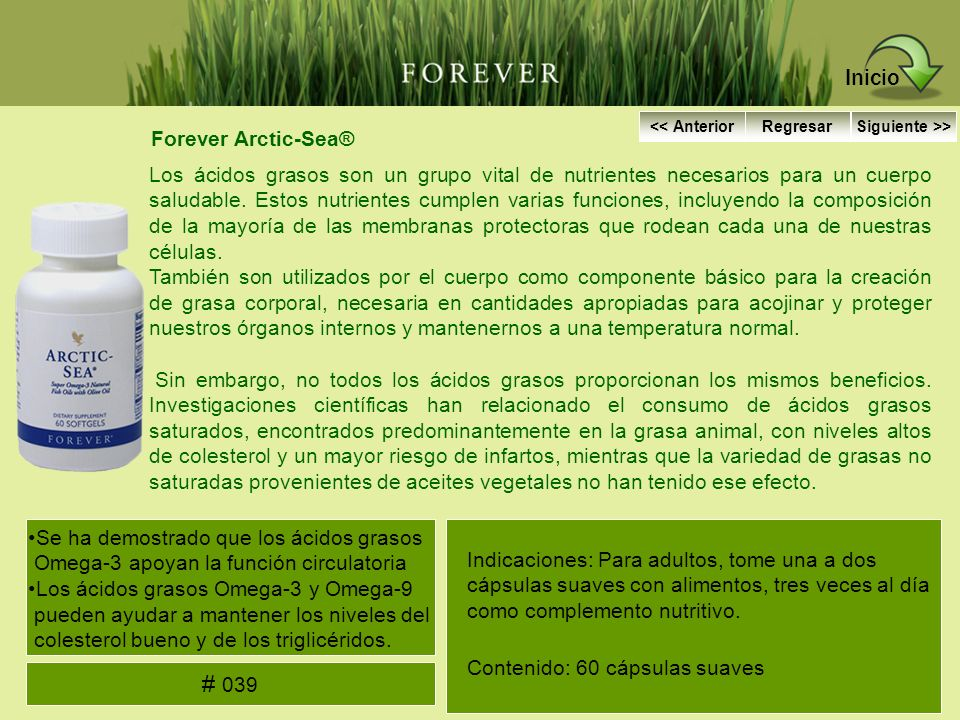 Inicio # 039 Forever Arctic-Sea®