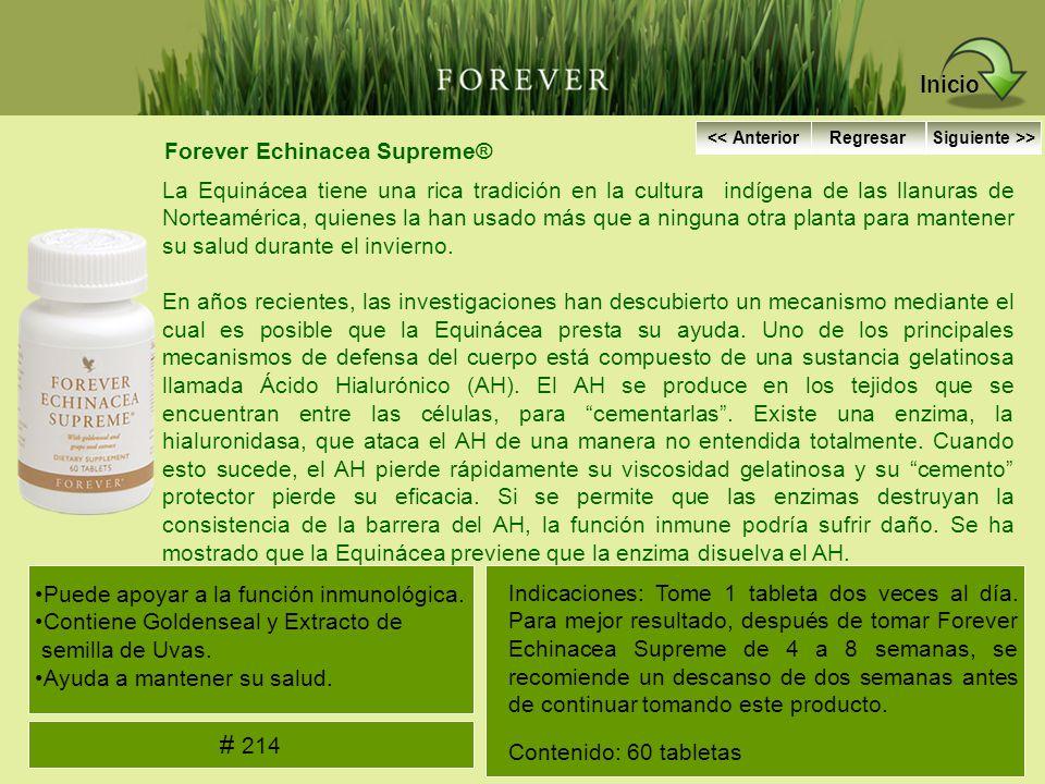Inicio # 214 Forever Echinacea Supreme®