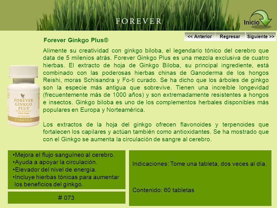 Inicio # 073 Forever Ginkgo Plus®