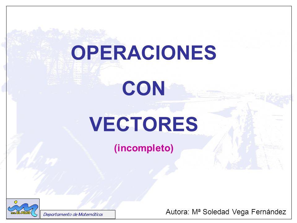 Autora: Mª Soledad Vega Fernández