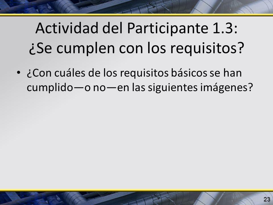 Actividad del Participante 1.3: ¿Se cumplen con los requisitos