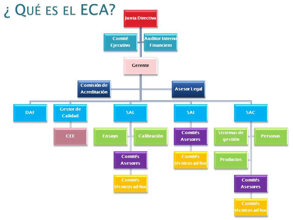¿ Qué es el ECA Junta Directiva Comité Ejecutivo