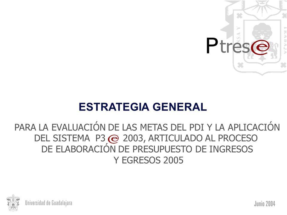 ESTRATEGIA GENERAL PARA LA EVALUACIÓN DE LAS METAS DEL PDI Y LA APLICACIÓN. DEL SISTEMA P3 2003, ARTICULADO AL PROCESO.