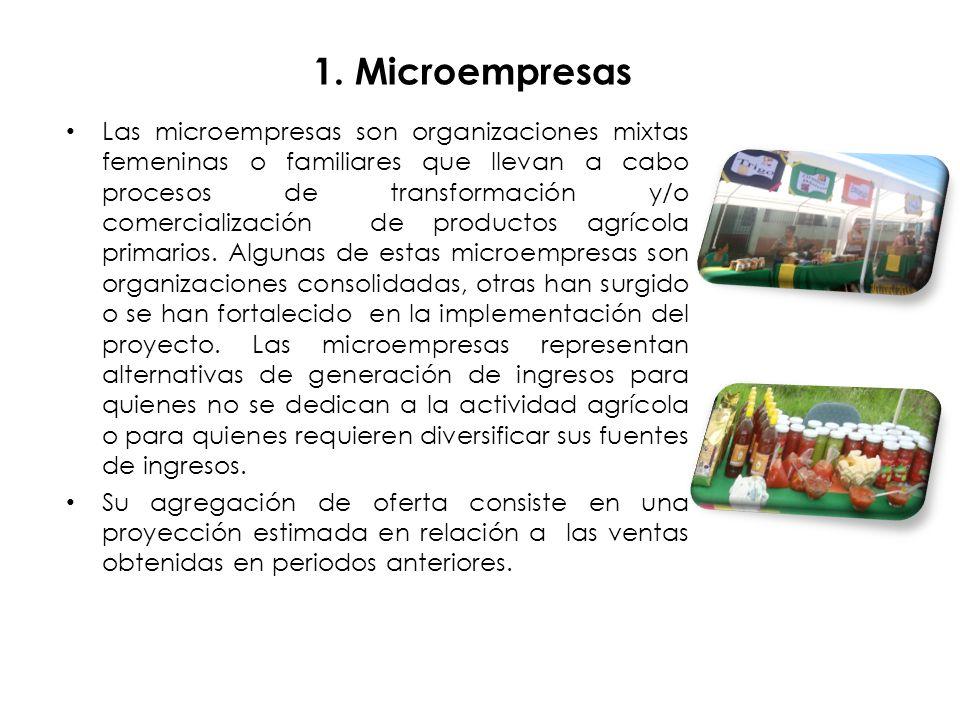 1. Microempresas