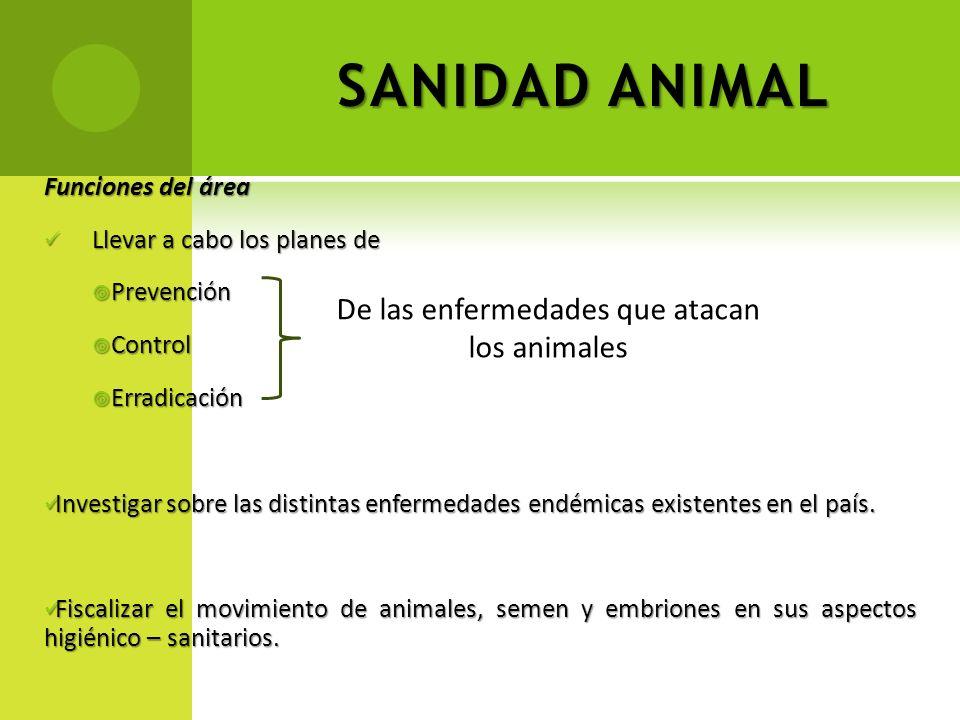 De las enfermedades que atacan los animales