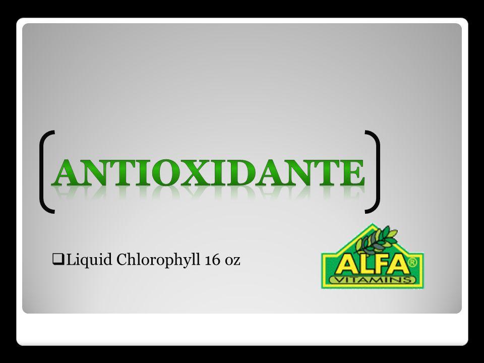 Antioxidante Liquid Chlorophyll 16 oz