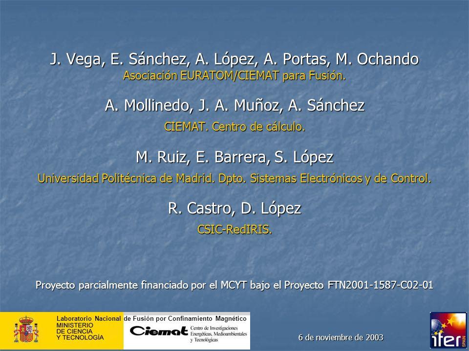 J. Vega, E. Sánchez, A. López, A. Portas, M. Ochando