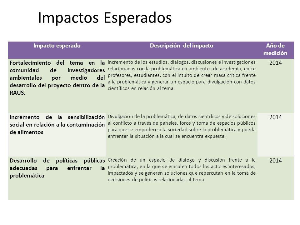 Descripción del impacto