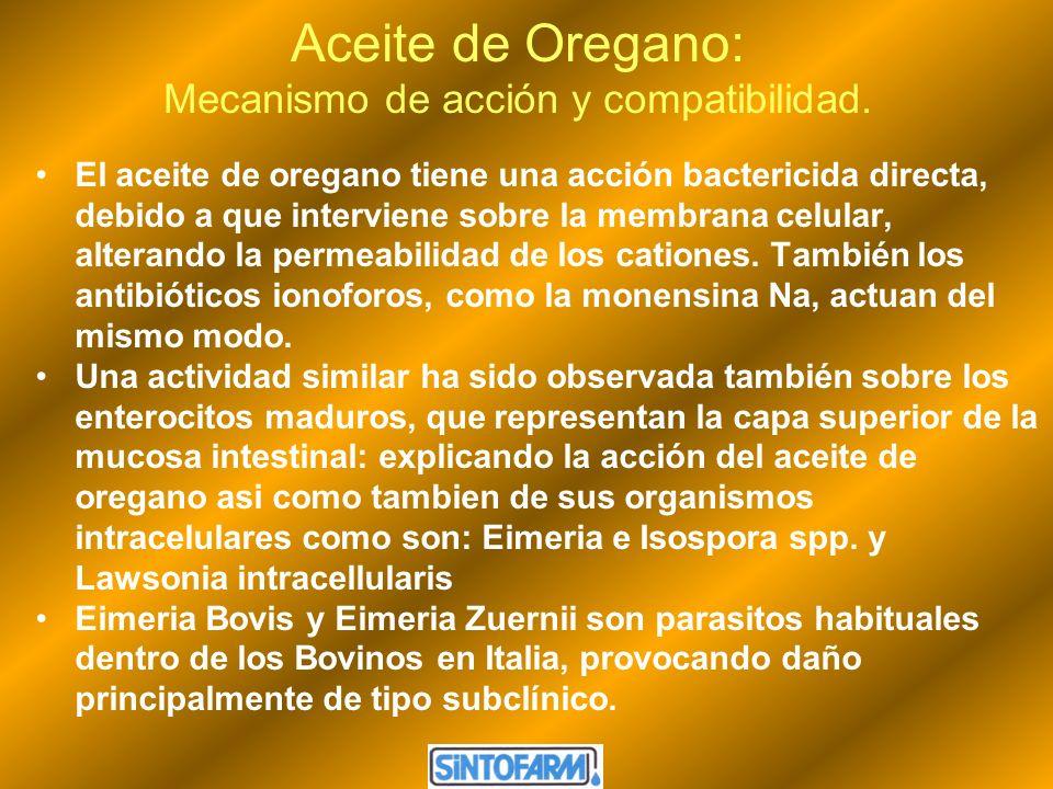 Aceite de Oregano: Mecanismo de acción y compatibilidad.