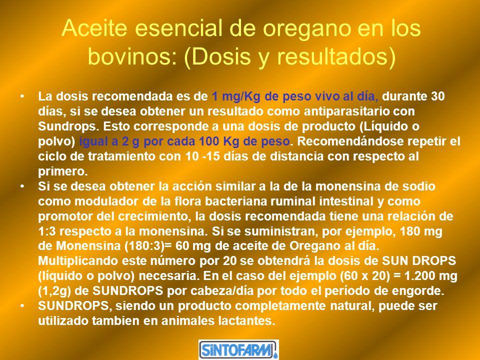Aceite esencial de oregano en los bovinos: (Dosis y resultados)