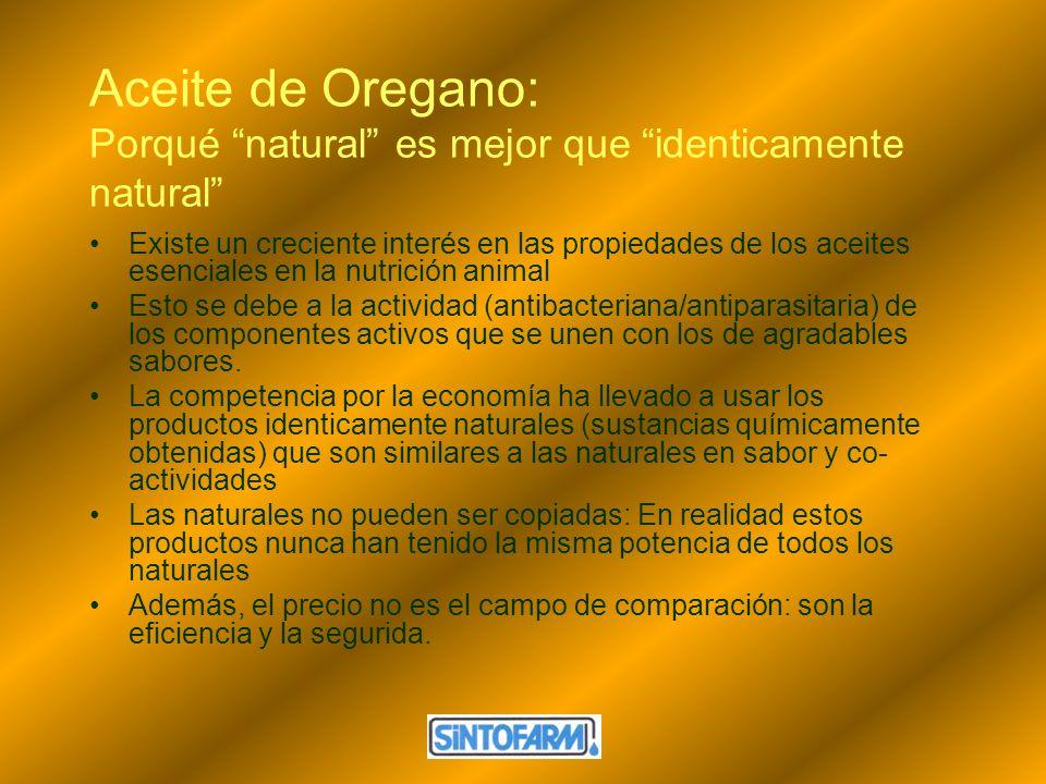 Aceite de Oregano: Porqué natural es mejor que identicamente natural