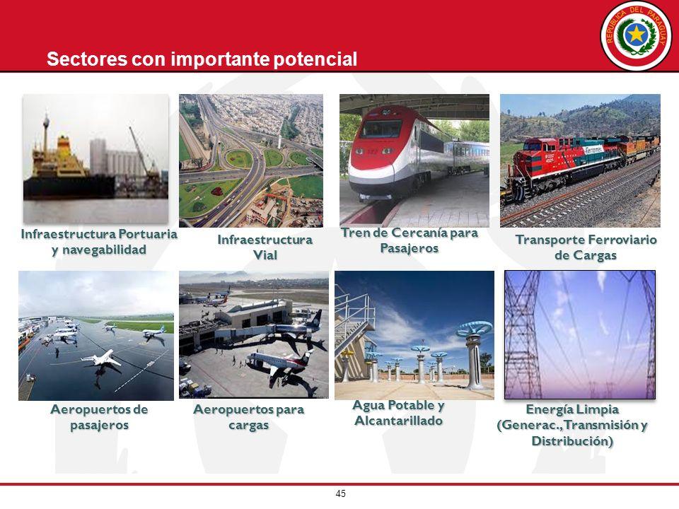 Sectores con importante potencial