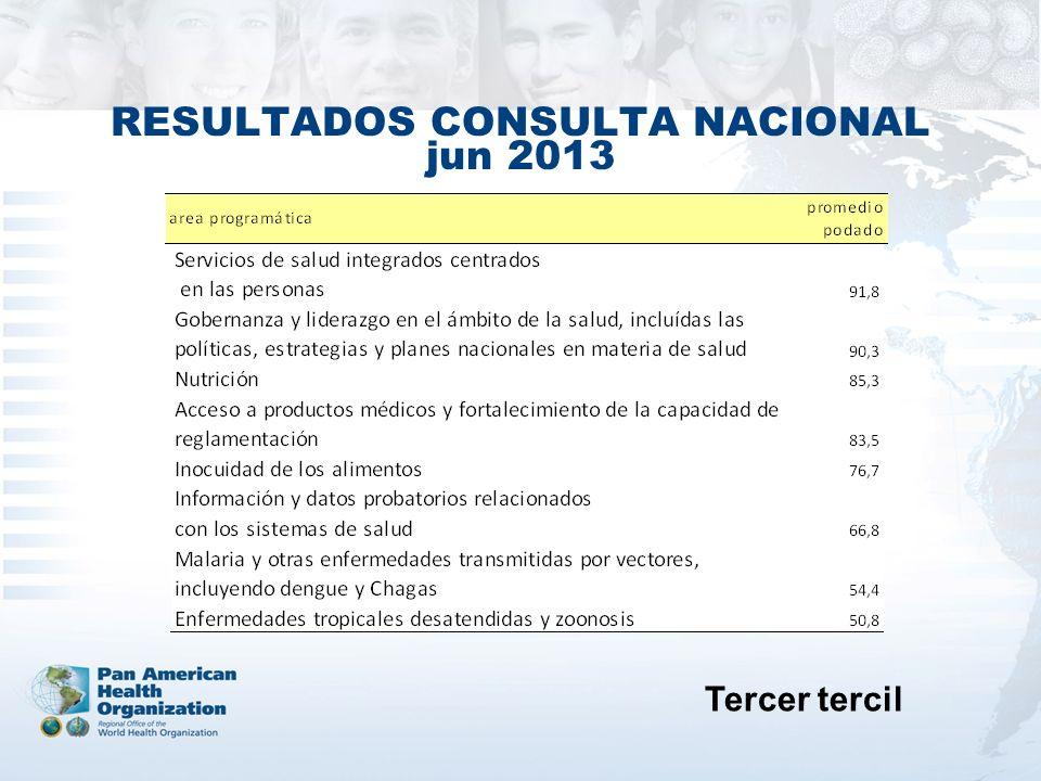 RESULTADOS CONSULTA NACIONAL jun 2013