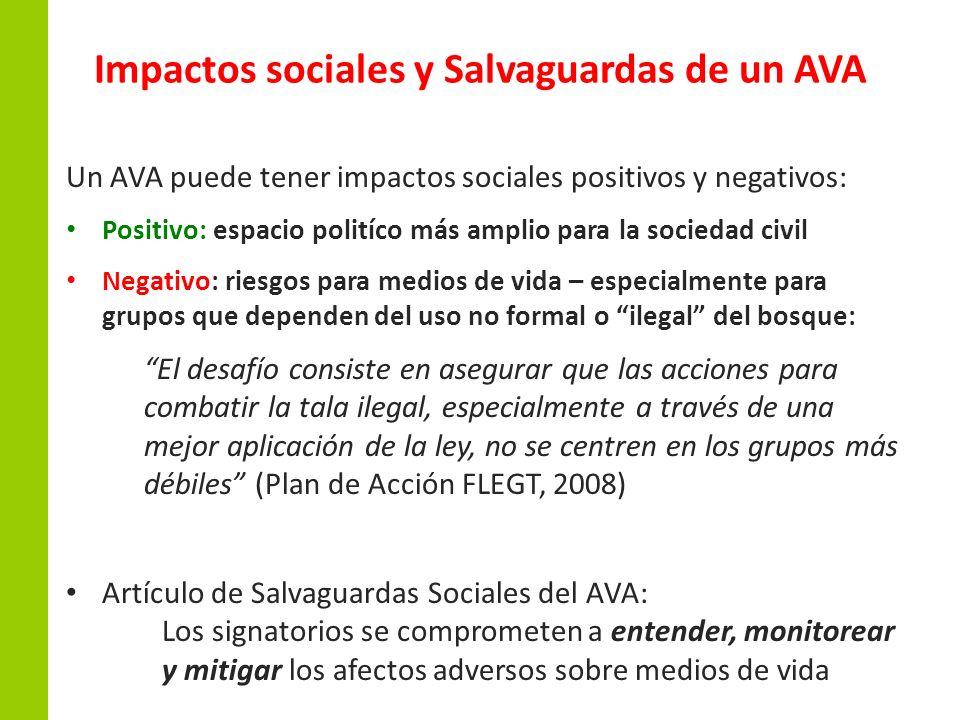 Impactos sociales y Salvaguardas de un AVA