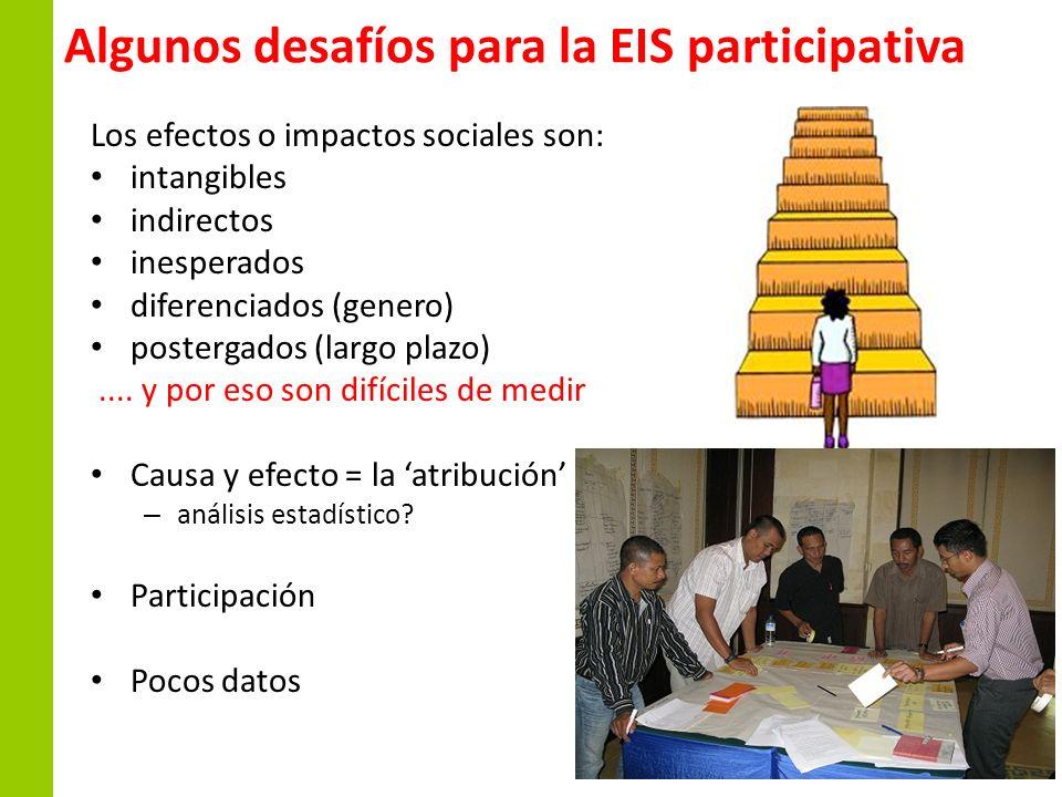 Algunos desafíos para la EIS participativa