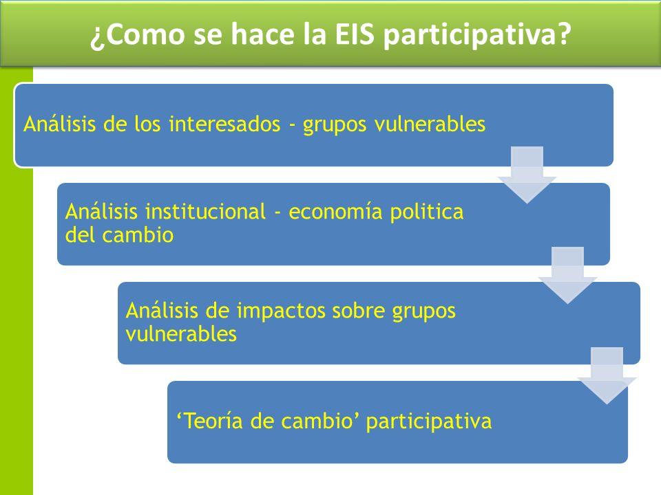 ¿Como se hace la EIS participativa