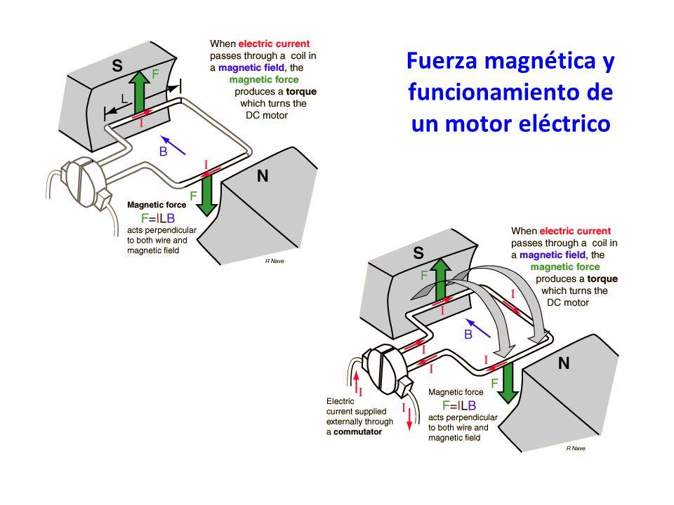 Fuerza magnética y funcionamiento de un motor eléctrico