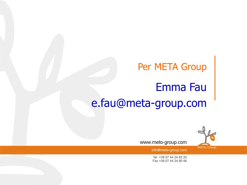 Emma Fau e.fau@meta-group.com e.mail: Per META Group Per META-Group
